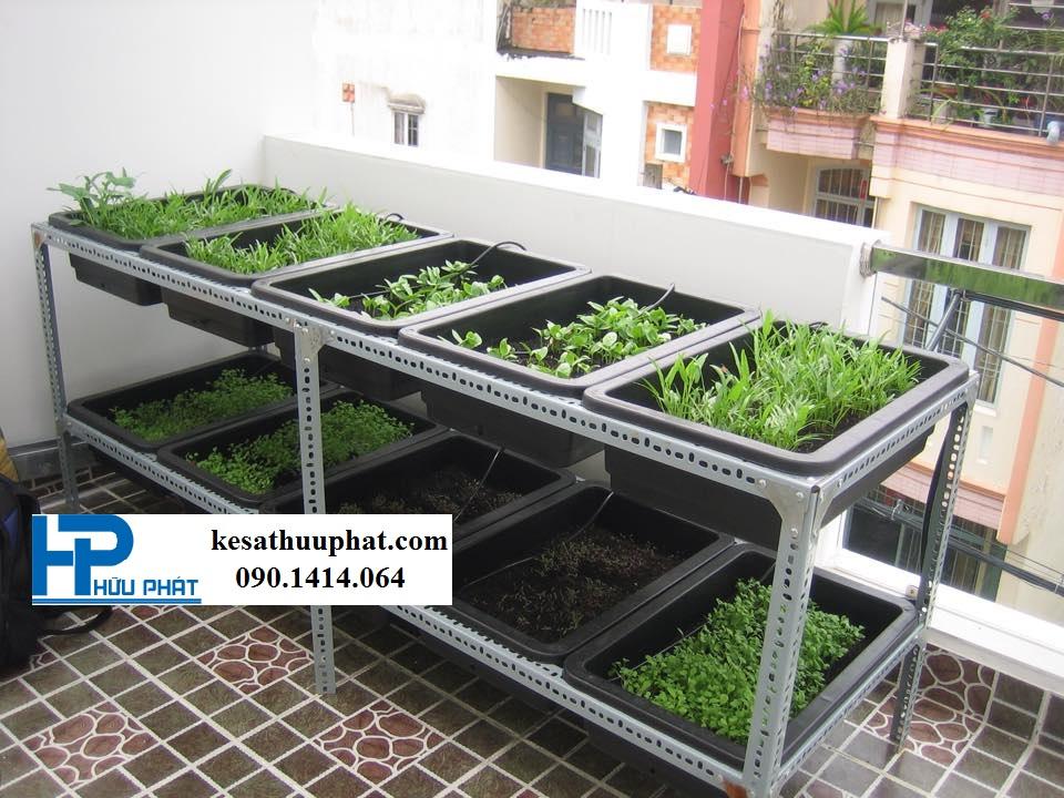 kệ rau trồng cây xanh bằng sắt v lỗ